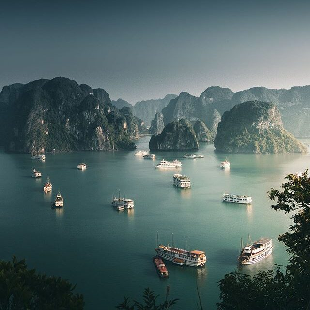 Price Comparison of Halong Bay Cruises to Plan Your Trip