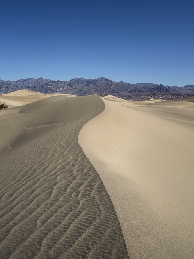 Mesquite Flat Sand Dunes. Picture from Roan Lavery