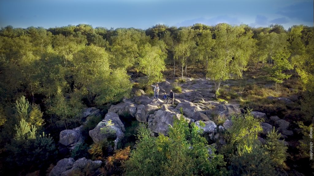 Picture from the official Fontainebleau tourism website