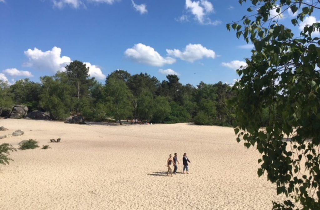 "One of Fontainebleau's ""beaches"", even if there is no sea at all anymore. Picture from Enlarge your Paris"