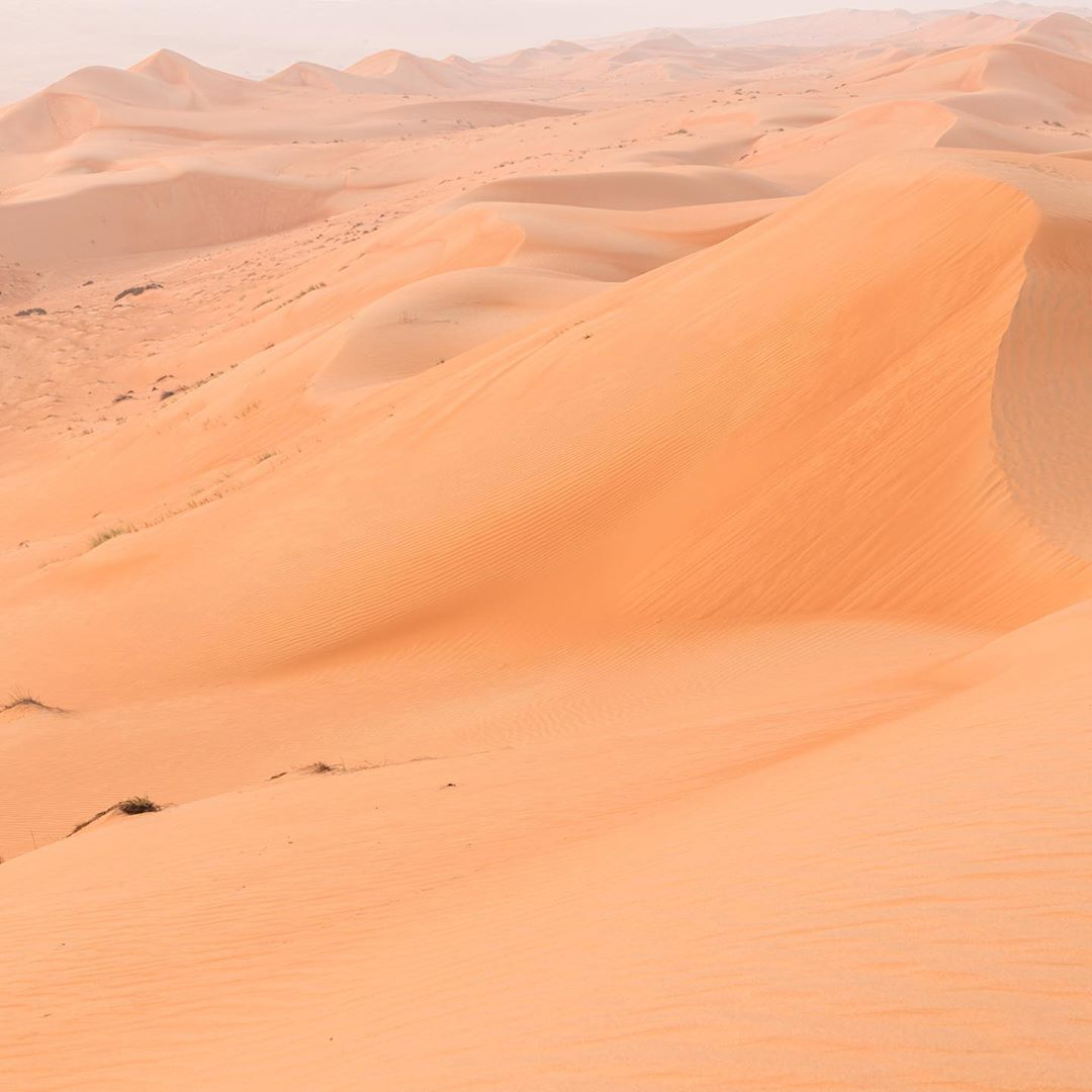 sand dunes in the desert in oman