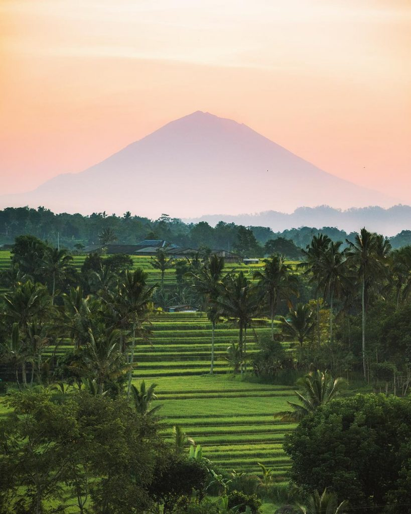 Jatiluwih Rice Terrace with Mount Batukaru in the back. Picture from @michaelmatti