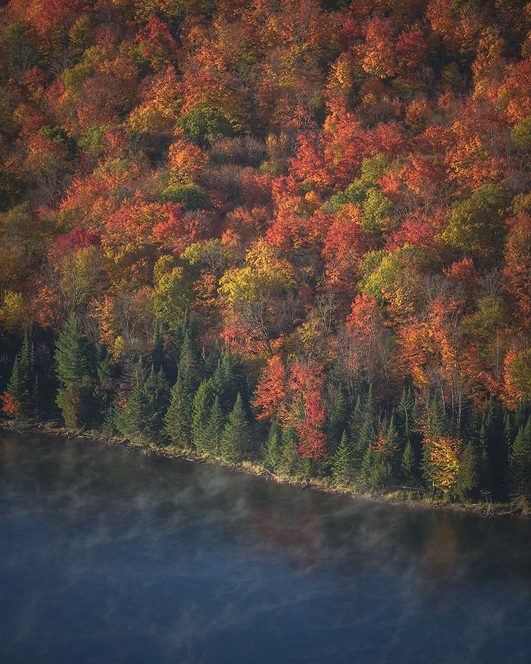 misty lake with autumn red and green trees