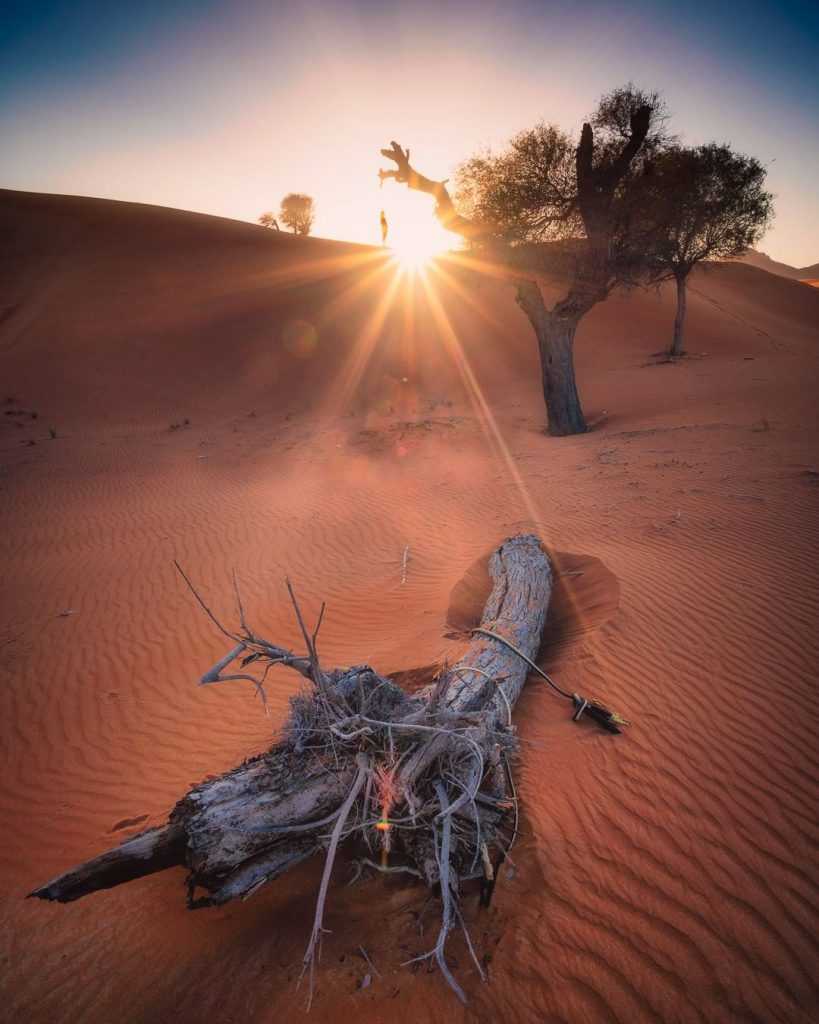 Dubai's nature is something a lot of people do not think about. Picture from Raffaele Cabras @mixyourshot