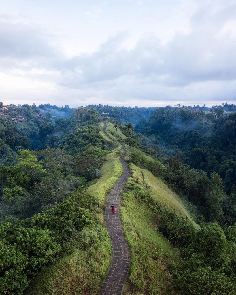 road on a crest in a jungle in bali