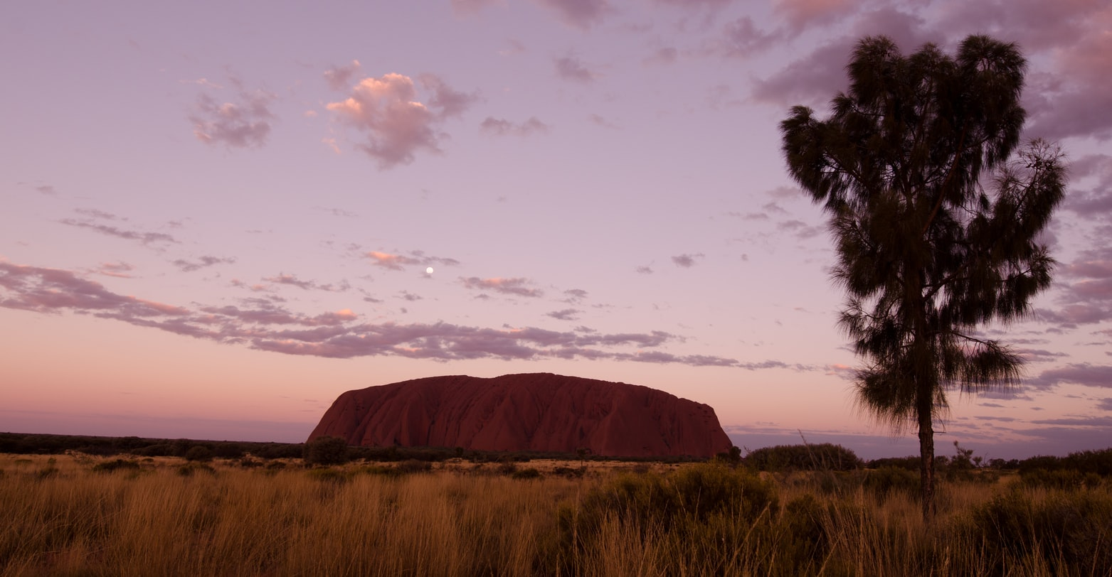 uluru is not the biggest rock in the world with grass and tree in the foreground photo