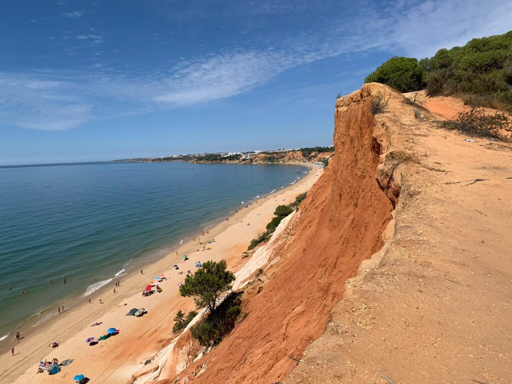 red cliff bear body of water at daytime