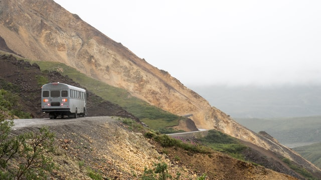 gray transit bus on mountain road in denali national park