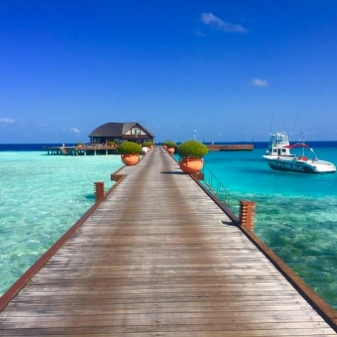 brown wooden dock in expensive maldives